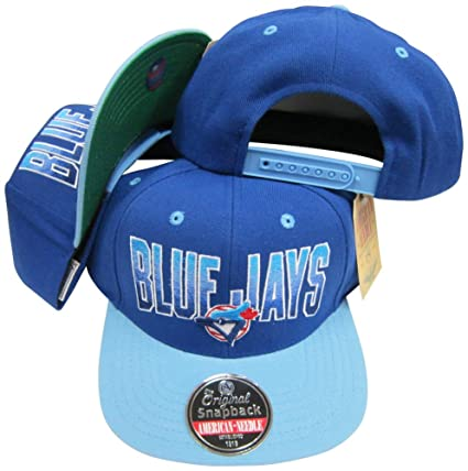 80ae6c4094d Image Unavailable. Image not available for. Color  American Needle Toronto  Blue Jays ...