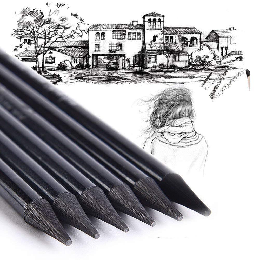Generic Mont Marte Woodless Graphite Charcoal Sticks Soft HB 2B 4B 6B 8B EE Pencils for Artist Beginner (Large, Black) - Set of 6 Pieces