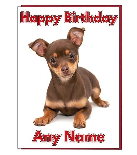 Tarjeta de cumpleaños - marrón perro Chihuahua personalizada ...