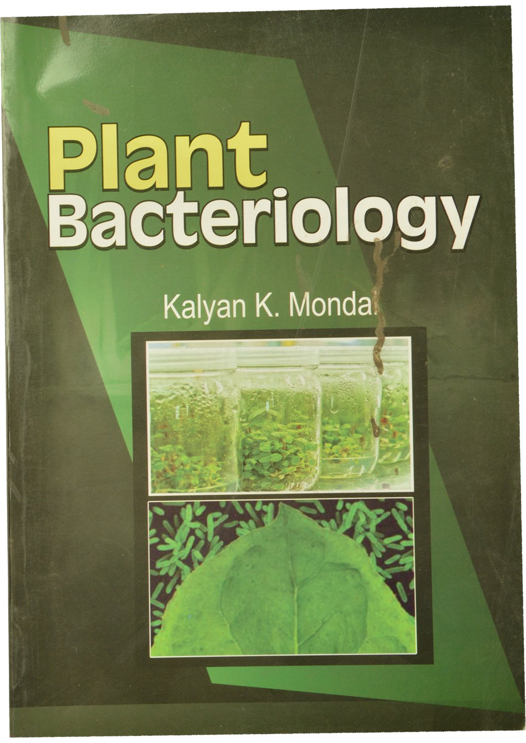 Buy Plant Bacteriology Book Online at Low Prices in India   Plant  Bacteriology Reviews & Ratings - Amazon.in