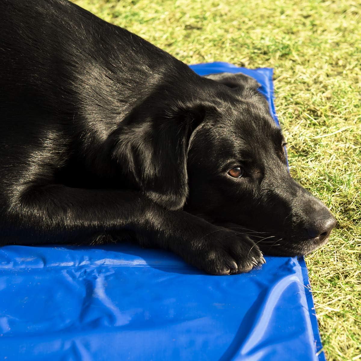 Manta refrescante 50 x 90 CM para Perro Gato Alfombrilla de refrigeraci/ón con patr/ón de Huesos Navaris Alfombra de enfriamiento para Mascotas