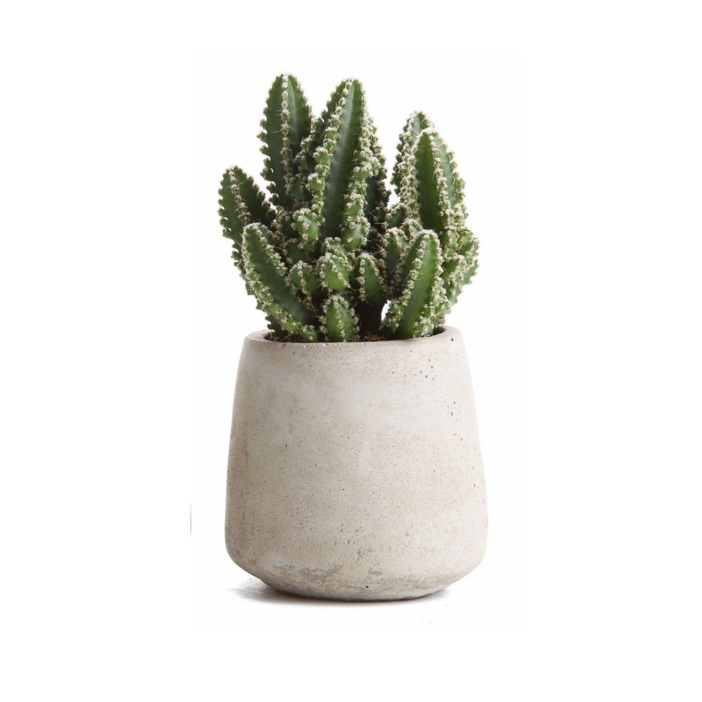T4U 9CM Cement Serial Big Round Sucuulent Cactus Plant Pots Flower Pots Planters Containers Window Boxes Grey Others