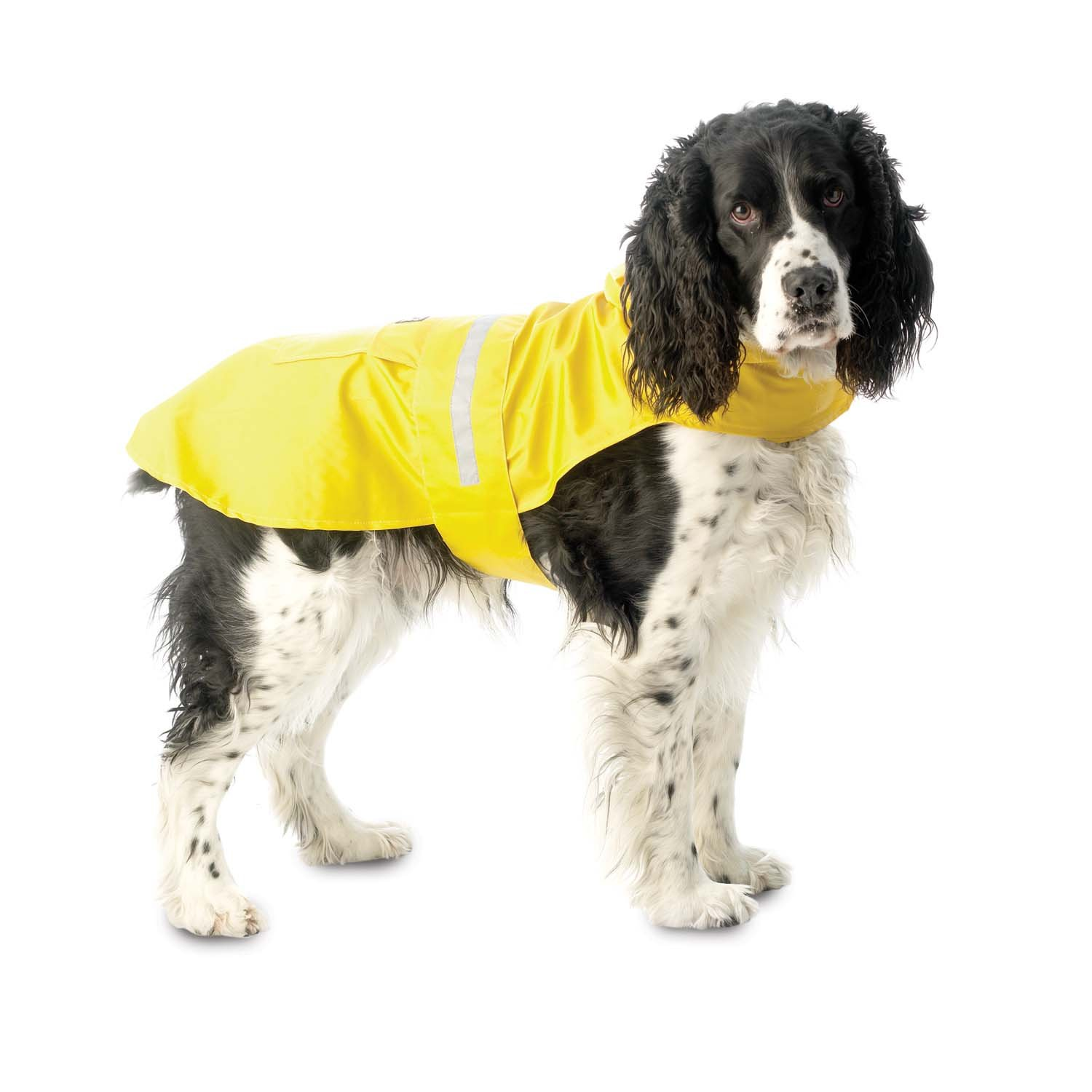 PetRageous Seattle Slicker for Pets, XX-Large, Yellow