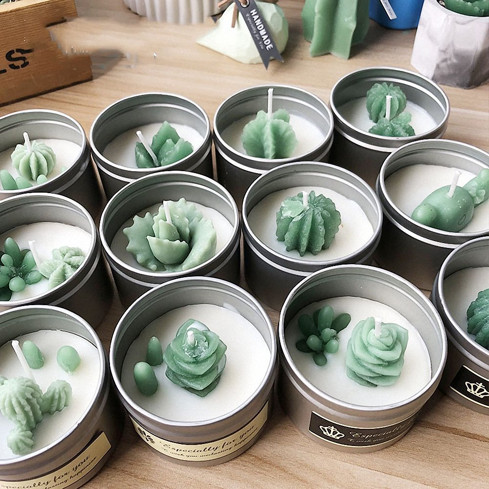 MoldFun 5-Pack Cactus and Succulent Plants Silicone Mold for Fondant Chocolate Candy Cake Decorating Candle Soap Lotion Bar Wax Crayon Melt Plaster Polymer Clay by MoldFun (Image #7)