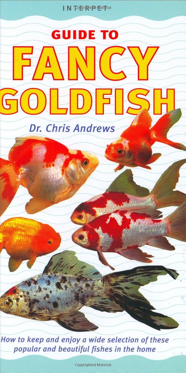 Fancy Goldfish How To Keep And Enjoy A Wide Selection Of These Popular And Beautiful Fishes In The Home Interpet Guide To Fishkeeper S Guides Chris Andrews 9781902389646 Amazon Com Books