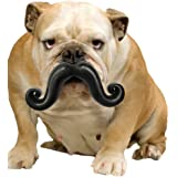 Moody Pet Humunga Stache Mini Dog Toy for Small Dogs