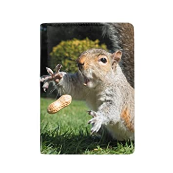 T-Shirts 3dRose Sven Herkenrath Animal Eating Squirrel Sitting in a House Mammal Forest Animal