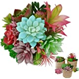 Artificial Succulents Unpotted Mini Plants – 19PCS for Perfect Mini Greenery Set-Including 3 Burlap Bags, Faux Assorted Small Bulk Flowers, Mixed Plastic Fake Realistic Hanging Decoration, DIY Plants