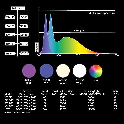 Spectrum and PAR measurement