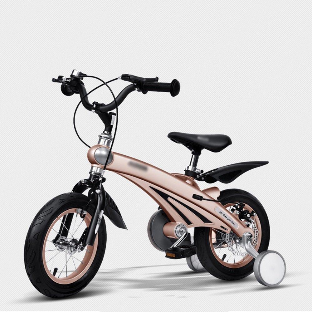 HAIZHEN マウンテンバイク 子供の自転車のサイズオプション12インチ14インチ16インチブルーピンクイエローシャンパンゴールド 新生児 B07CCJW177 アウトレットセール 特集 しゃんぱんご゜るど 2 激安特価品 シャンパンゴールド inch