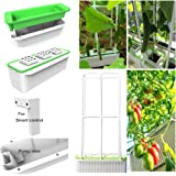 "Big Smart Hydroponics Growing System self Watering Planter with Built-in Pump and Smart Reminder 60"" Climbing Trellis…"