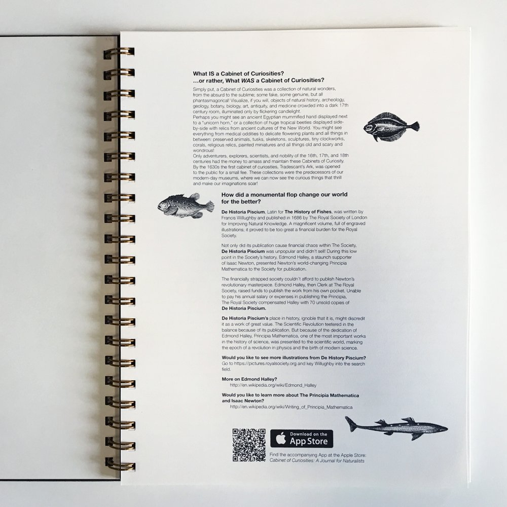 Action Publishing Cabinet of Curiosities · De Historia Piscium NoteBook ·  Side-Bound Notebook, 140 Off-White Pages with Various Fish Illustrations