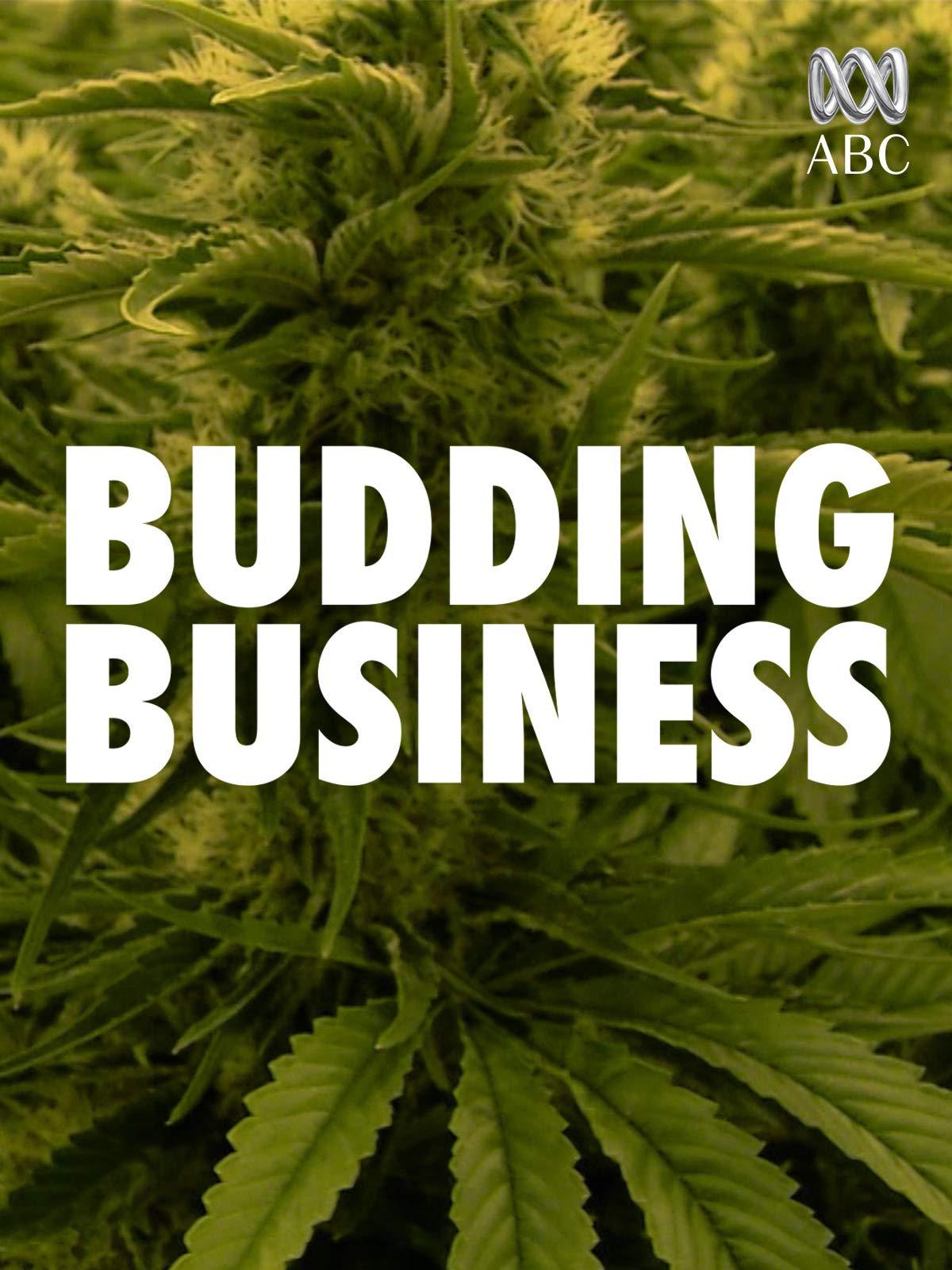 Budding Business on Amazon Prime Video UK