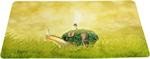 Snail Starts The Fantastic Journey with The Dream House on his Back Funny Doormat Floor Mat with Non-Slip Backing Sunny Background Grass in The Sun Bath Mat Rug Excellent Home Décor 16 × 24 inches