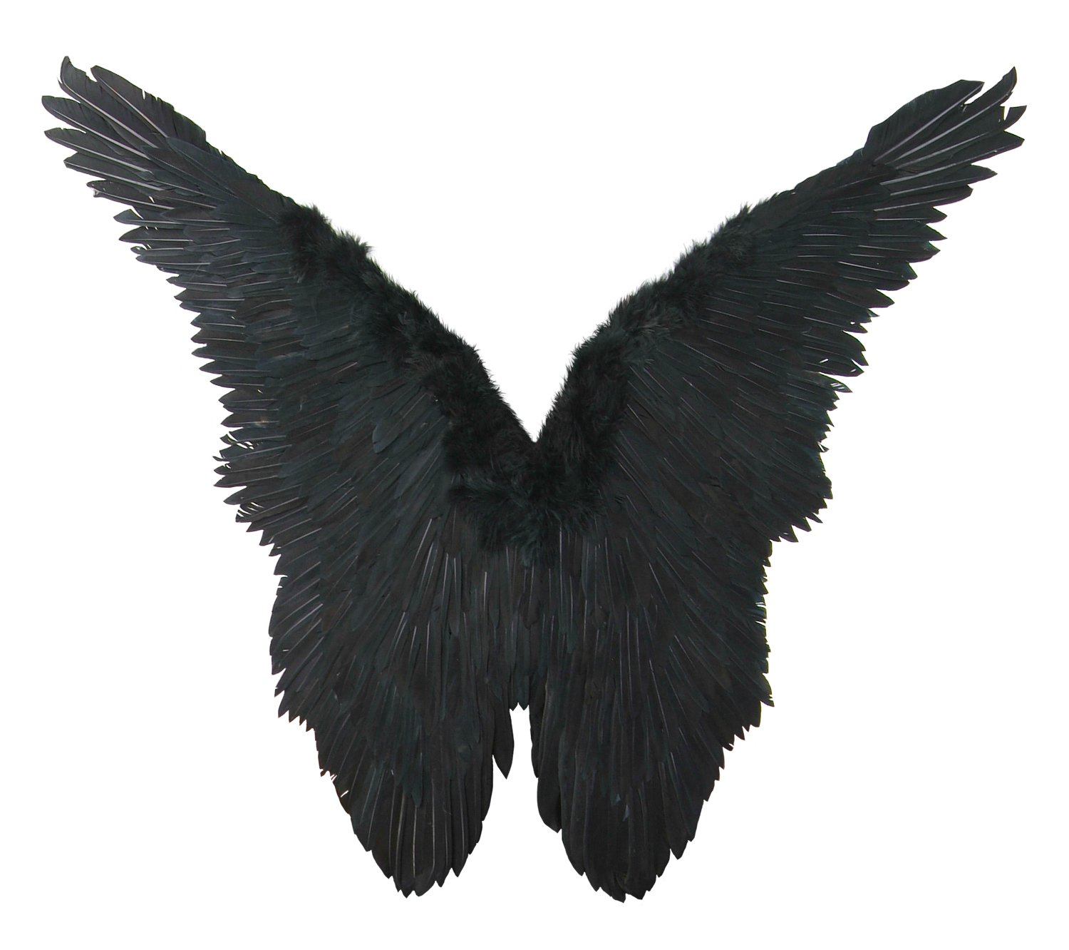 FashionWings (TM Black Butterfly Style Costume Feather Angel Wings Adult Size Unisex