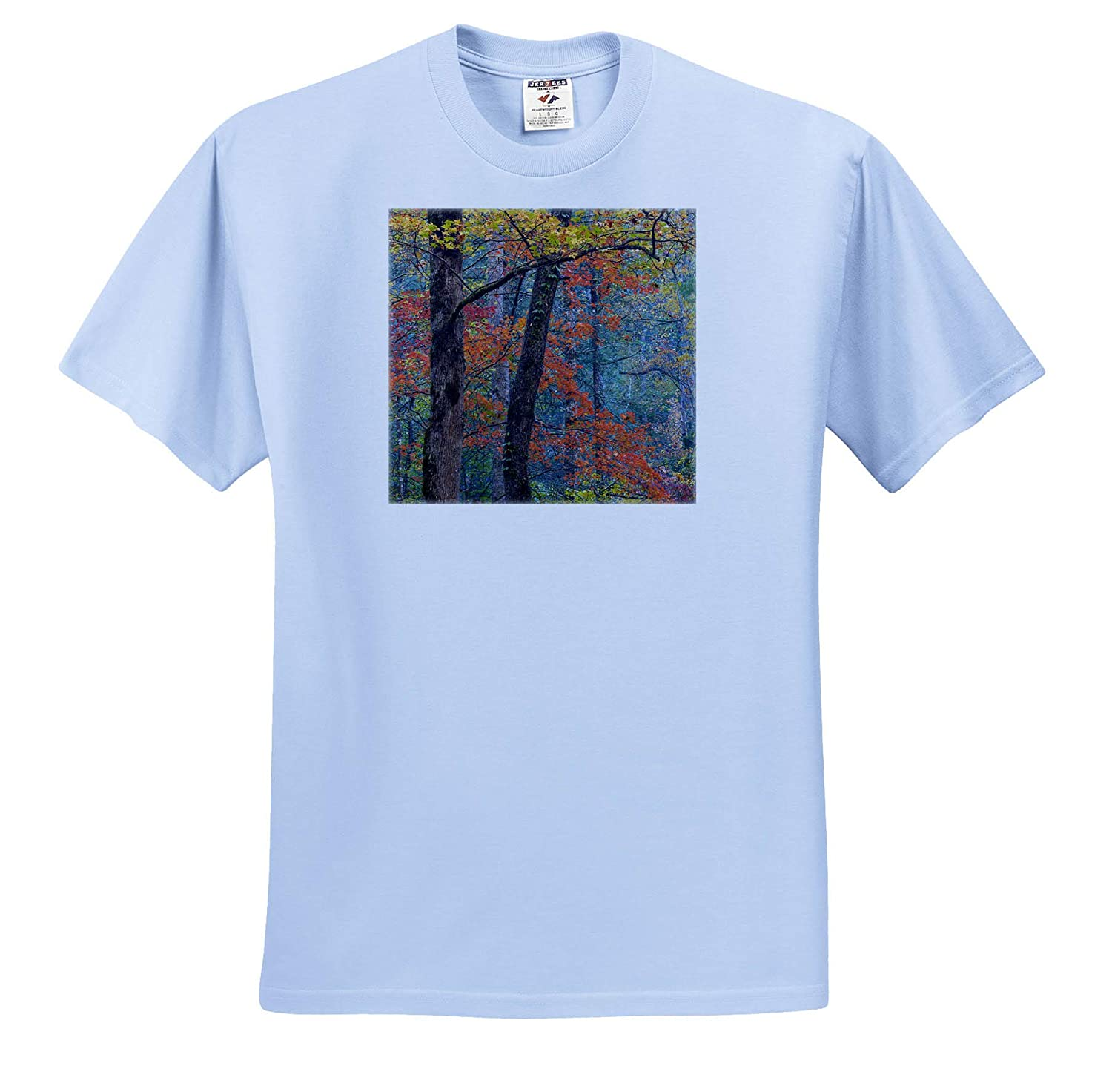 Tennessee USA ts/_315020 Forest Scenic in Autumn Autumn - Adult T-Shirt XL 3dRose Danita Delimont