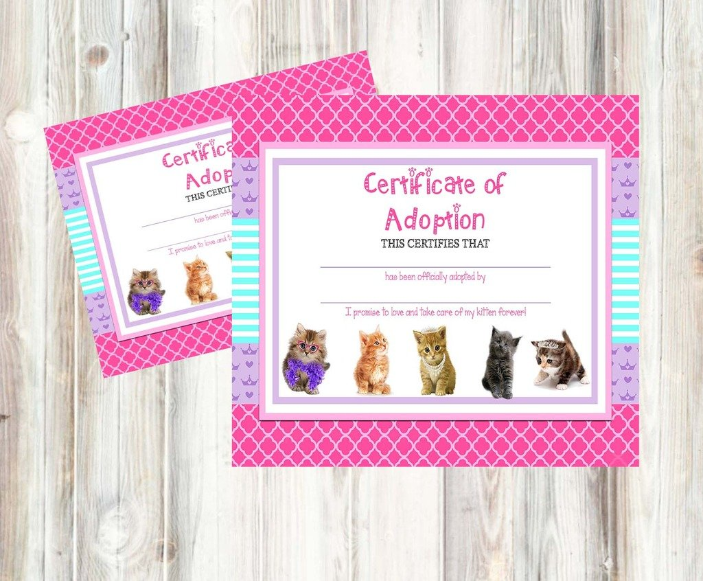 Amazon glam kitty cat pet adoption party supply theme amazon glam kitty cat pet adoption party supply theme adoption certificate toys games xflitez Gallery