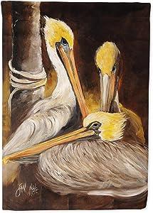 Caroline's Treasures JMK1146GF Brown Pelicans Flag Garden Size, Small, Multicolor