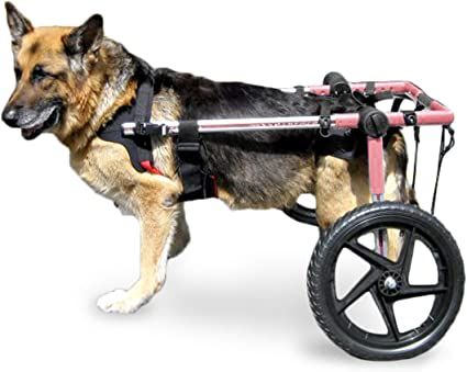 Walkin' Wheels Dog Wheelchair ...
