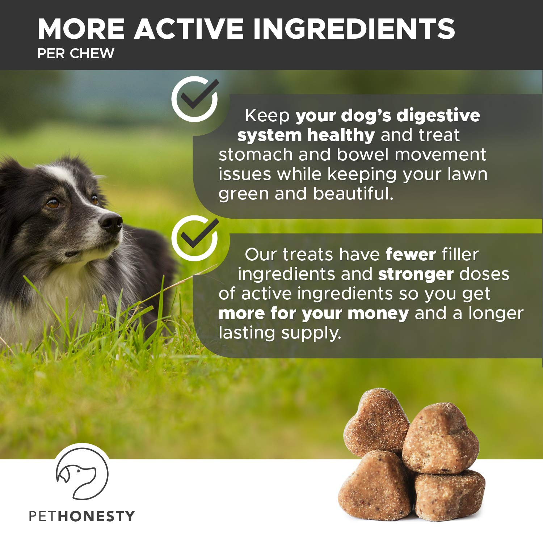 PetHonesty GrassGreen Grass Burn Spot Chews for Dogs - Dog Pee Lawn Spot Saver Treatment Caused by Dog Urine - Cranberry, Apple Cider Vinegar, DL-Methionine Grass Treatment Rocks - 90 Chew Treats by PetHonesty (Image #6)