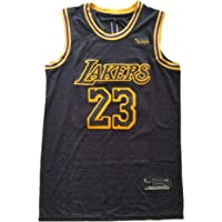 f1ffc5a0a Youth Los Angeles  23 Lebron James Lakers 2018 19 Swingman Jersey Black