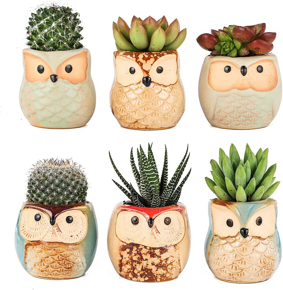 Owl Planter Pots for Succulents,Ceramic Cactus Flower Pots Pack of 6 Home Office Decor Owl Pot Without Bamboo Tray