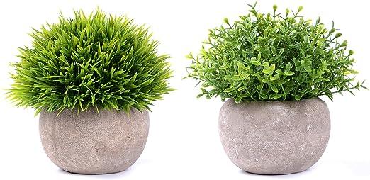 YQing Plantas Suculentas Artificiales Plastico Maceta Decorativas, Plantas Artificiales Verdes para Casa, Cocina, Jardín Hogar Oficina Decoración (2 Piezas Hierba Verde): Amazon.es: Jardín