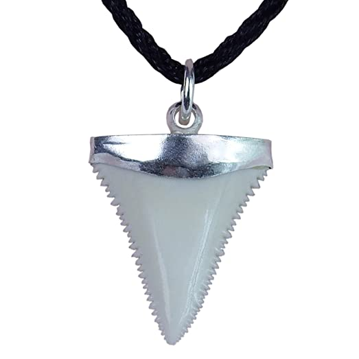 Gemshark real shark tooth necklace great white sterling silver gemshark real shark tooth necklace great white sterling silver capped novelty charm pendant aloadofball Gallery