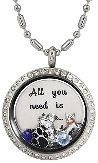 Amazon dr memory locket pendant necklace all you need is love dr memory locket pendant necklace all you need is love colorful birthstones and heart aloadofball Images