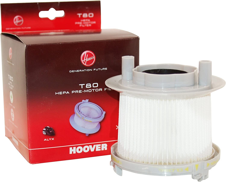 Filtro HEPA per aspirapolvere Hoover TC1185 001 ricambio