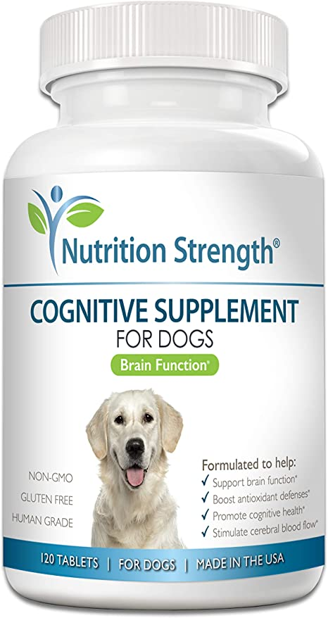 Nutrition Strength Cognitive Support for Dogs