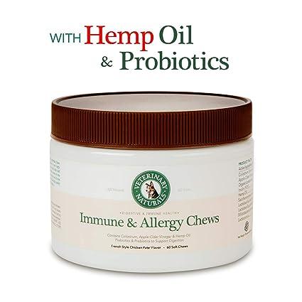 Amazon.com: Vet Naturals mejor Probiotics para perros con ...