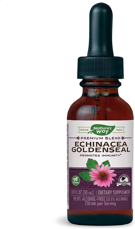 Nature's Way Premium Formula Echinacea-Goldenseal, 250 mg per serving, 99.9% Alcohol-Free, 1.01 Oz.: Health & Personal Care