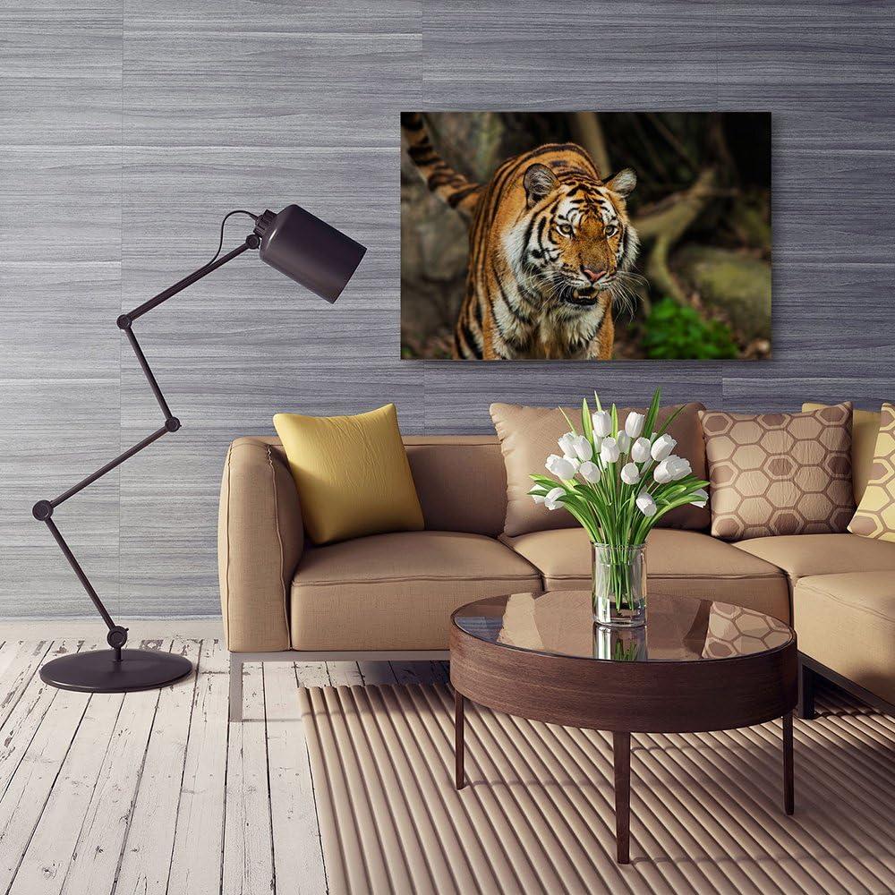 Zoo Tableau imprim/é sur Toile Nature Tableau Deco Canvas 30x40 cm Tigre Feeby Frames Tableau imprim/é XXL Afrique Animaux