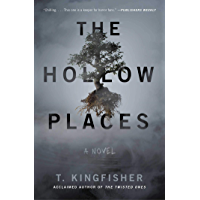 The Hollow Places: A Novel book cover