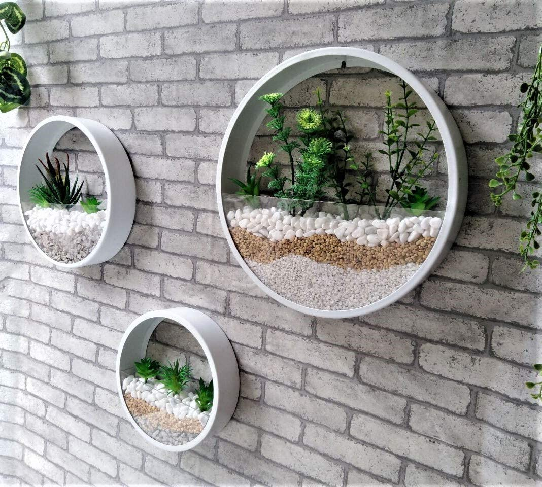 Ecosides Maceta de pared suculenta,2 en 1 soporte de maceta flores cristal recipiente de metal redondo vertical para colgar plantas de aire cactus decoraci/ón de pared para bar sala de estar,cocina