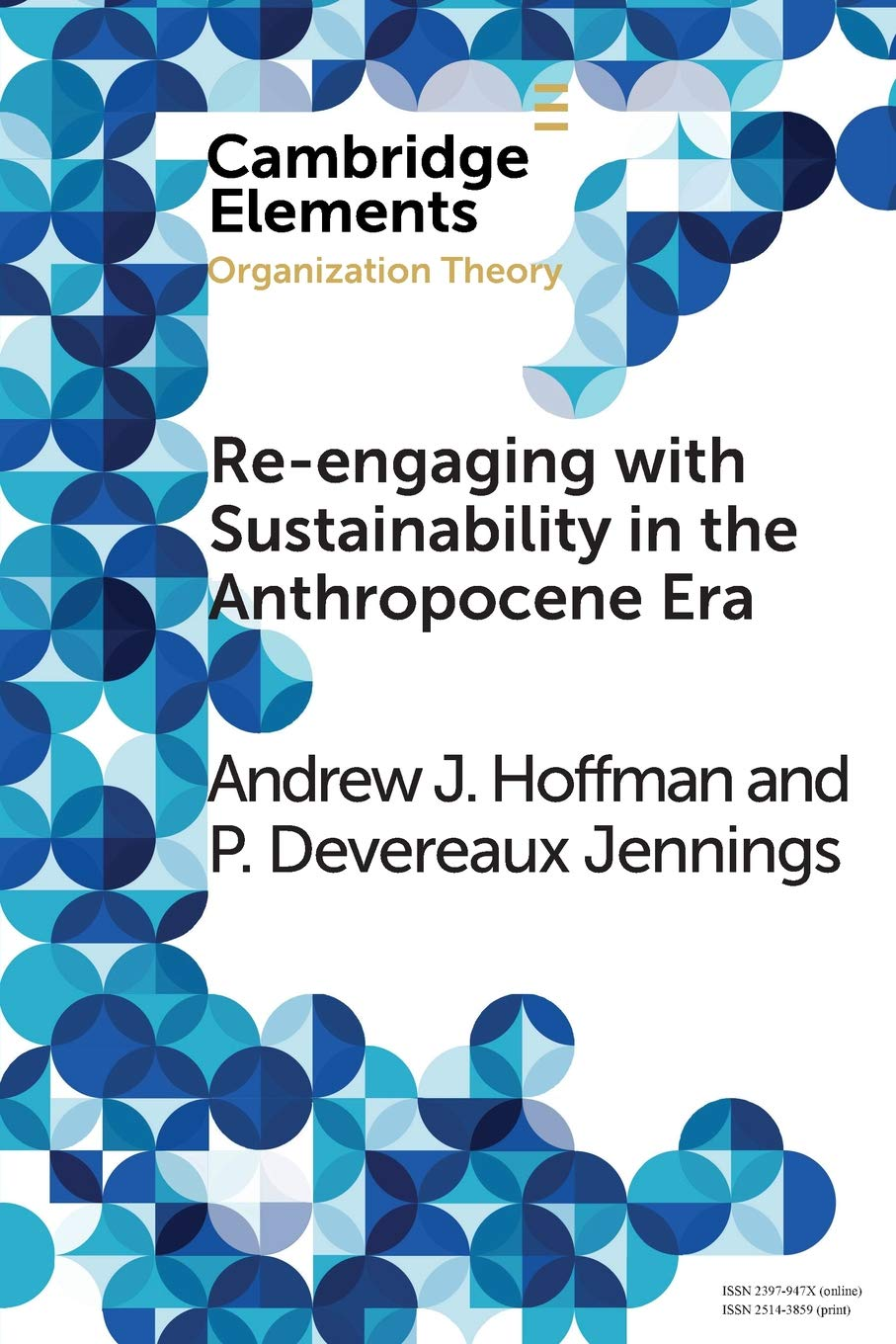 Download Re-engaging with Sustainability in the Anthropocene Era: An Institutional Approach (Elements in Organization Theory) PDF