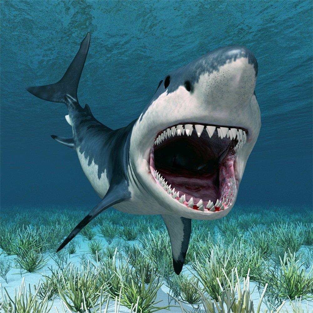 Leowefowa 5X5FT Vinyl Underwater World Backdrop Aquarium 3D Great White Shark Green Grass Ocean & Sea Cartoon Photography Background Boys Kids Happy Birthday Party Photo Studio Props
