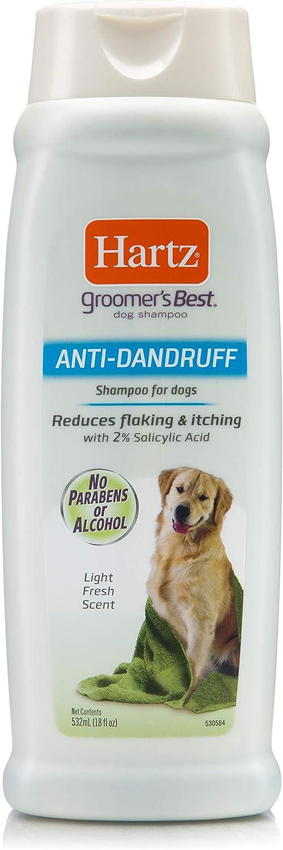 Mejores champús anticaspa para perros