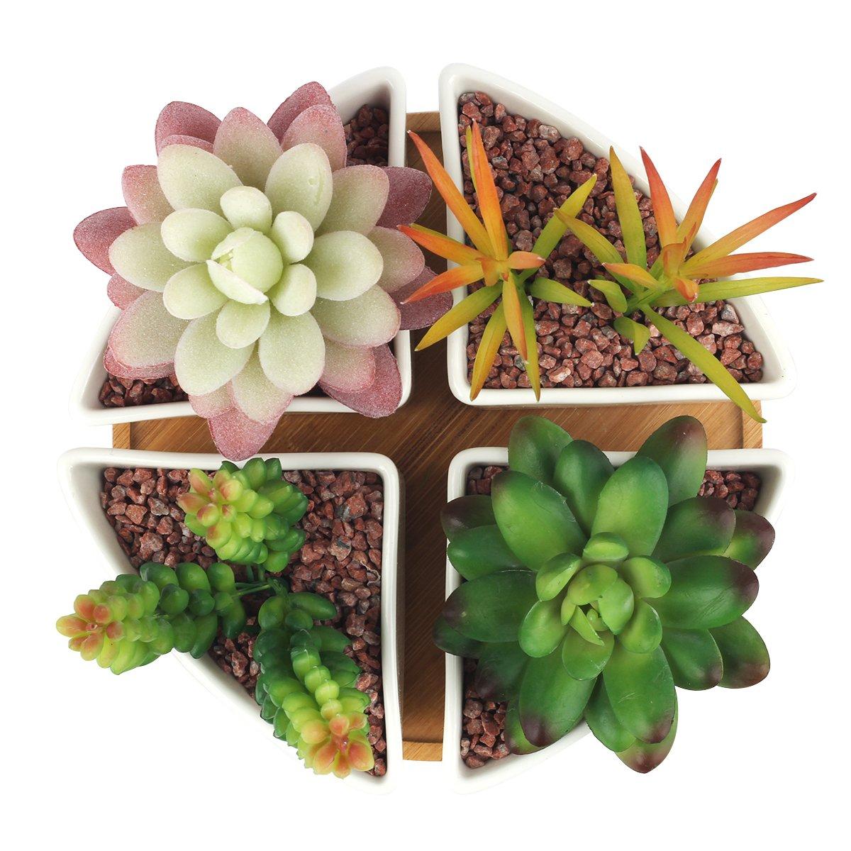 Innoter Succulent Planter Modern White Ceramic Cactus Flower Pot