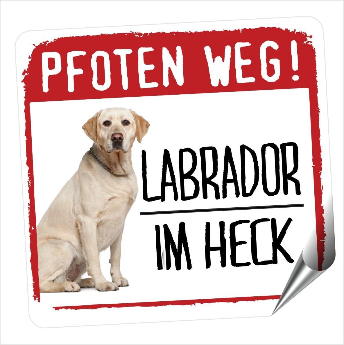 Siviwonder Labrador Pfoten Weg Kleiner Auto Aufkleber Hundeaufkleber Reflektierend Reflective Labby Auto