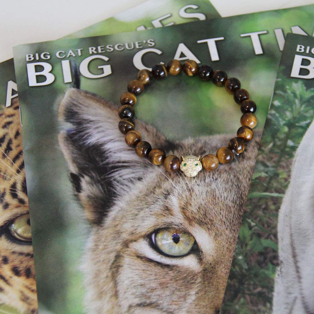 Amazon com: Big Cat Rescue