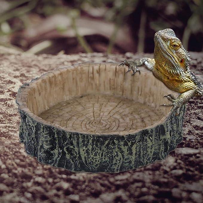 GLOBEAGLE - Cuenco de Resina para Reptiles de Mascotas, para Manualidades, Acuario, pecera, paisajismo, Adornos: Amazon.es: Hogar