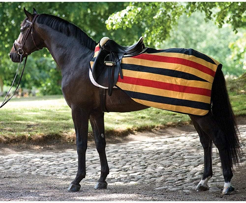 Horseware Ireland Rambo Fleece Competition AGAC6N