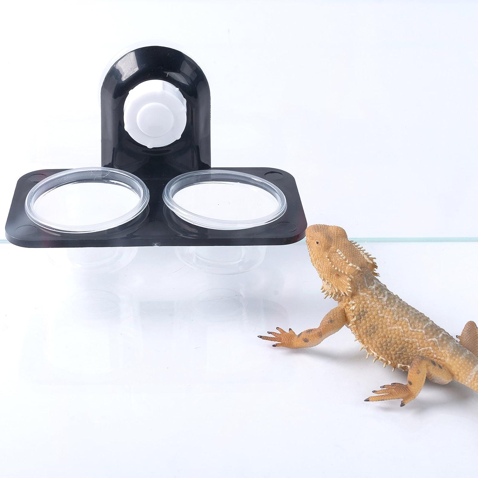 SLSON Gecko Feeder Ledge Acrylic Suction Cup - 5