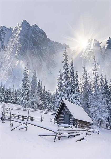 amazon com aofoto 5x7ft winter snow scenery photography studio