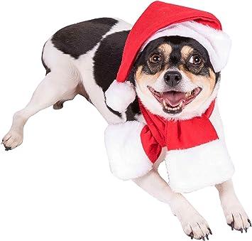 Clever Creations Disfraz navideño para Perros - Ideal para Casi ...
