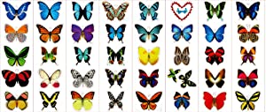 Premium Butterfly Stickers, Decals - For Cards, Envelopes, Laptops, Windows