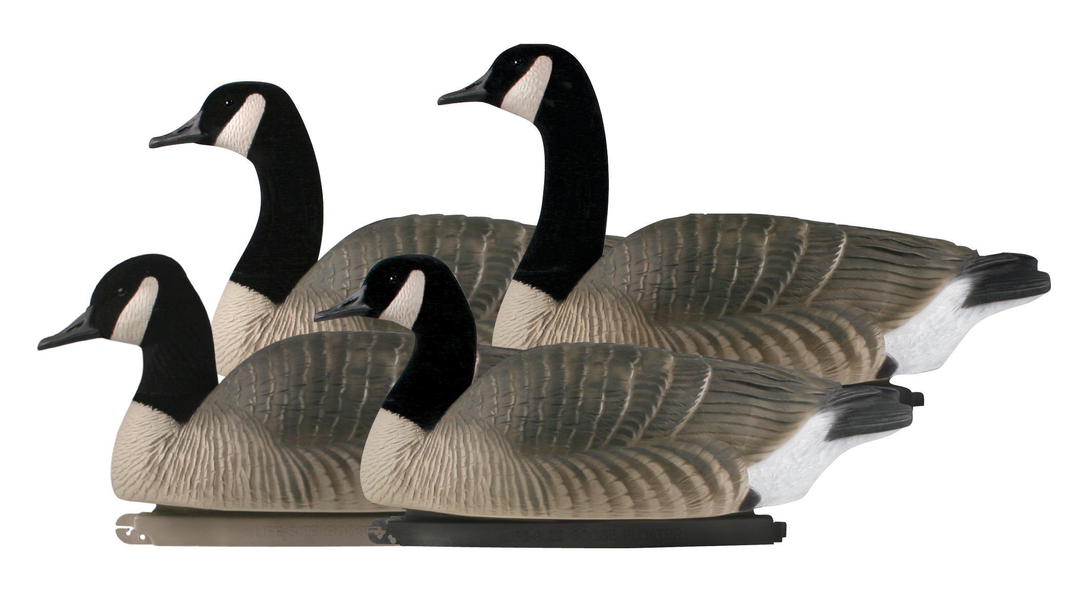 Avery Greenhead Gear, Pro-Grade Canada Goose Floater Decoys, 71085 - 4 Pack