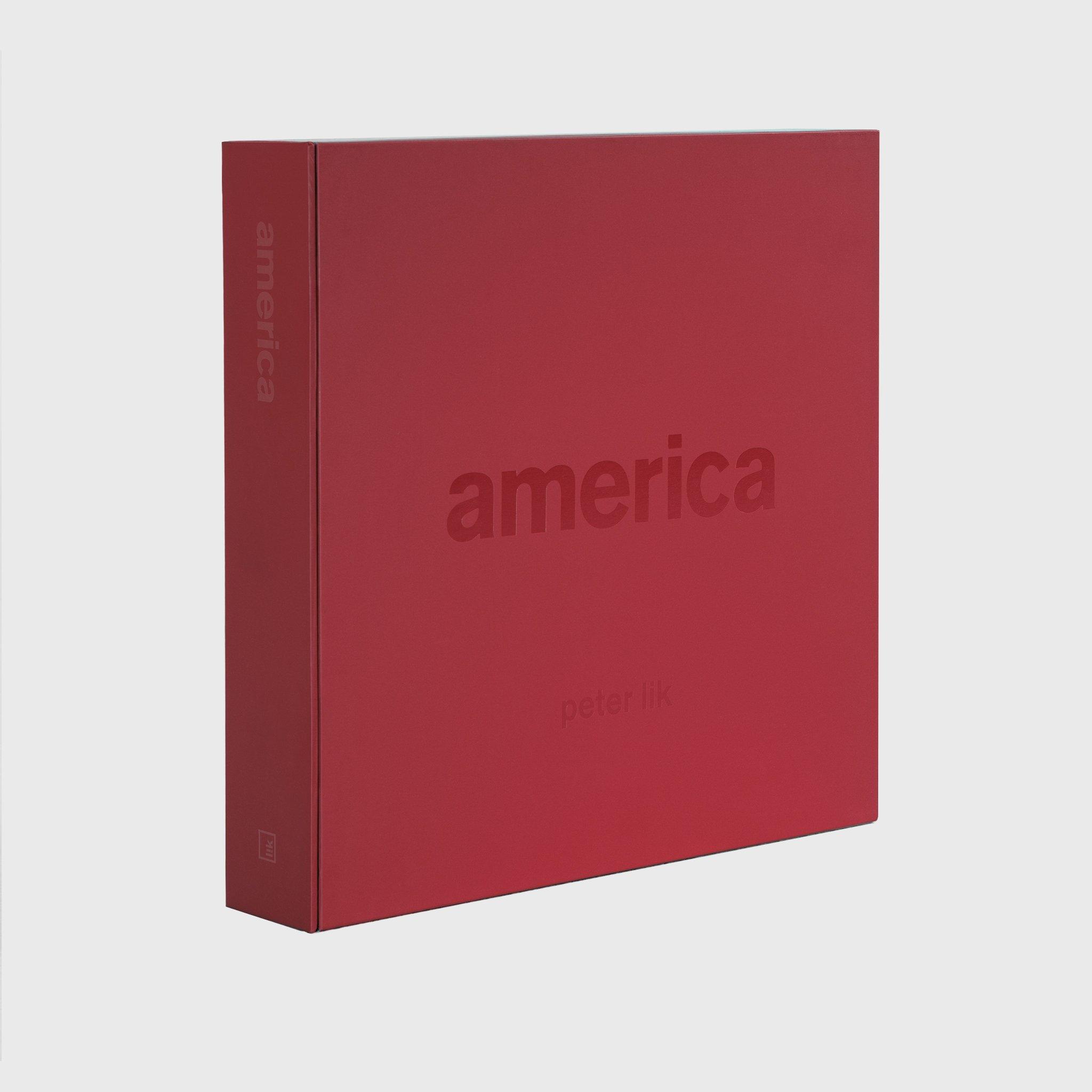 Download America pdf epub
